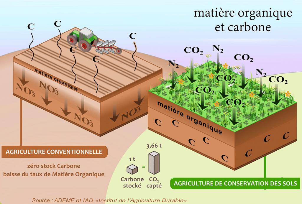Matière Organique et Carbone